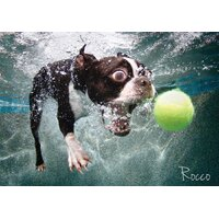 Cheatwell - Underwater Dogs Rocco Puzzle 1000pc