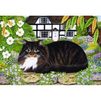 Holdson - Country Cats - On The Garden Wall Puzzle 500pc
