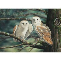 Holdson - Wild Wings, At Dusk We Fly Puzzle 1000pc