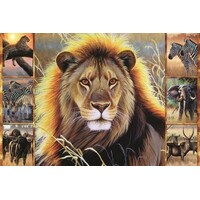 Jumbo - African Beauty Puzzle 1500pc