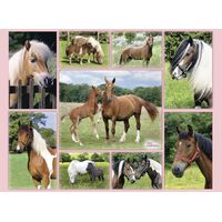 Ravensburger - Horse Heaven Puzzle 300pc