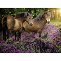 Ravensburger - Ponies in the Flowers Puzzle 500pc