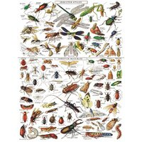 New York Puzzle Company - Insects Puzzle 1000pc