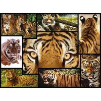 WWF - Tigers Puzzle 1000pce